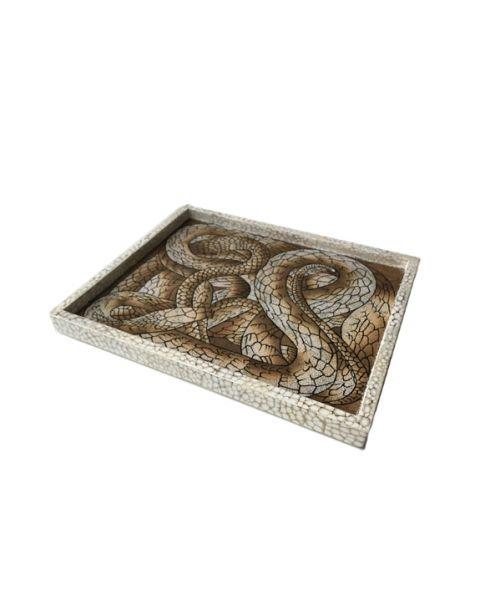 Tray Snake 35x26