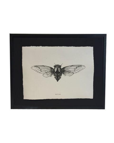Zeefdruk Cicada 87 cm