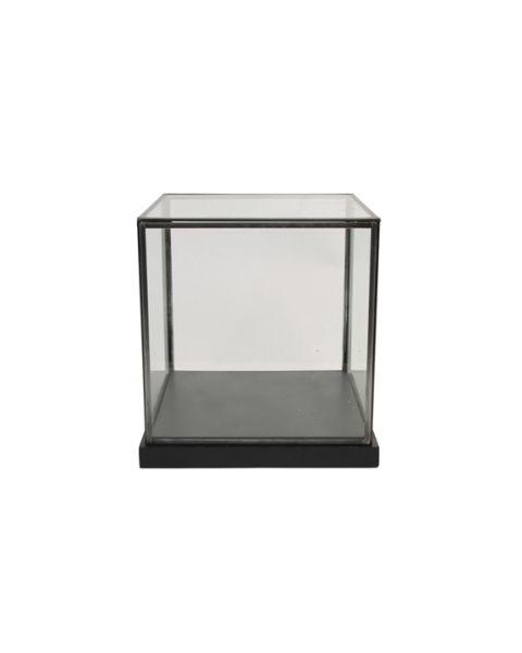Showcase cabinet square