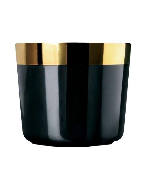 Sip of Gold black plain
